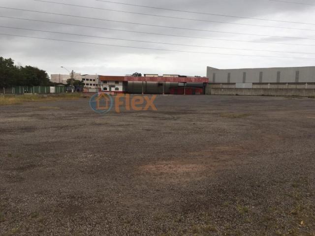 Terreno para alugar em São geraldo, Serra cod:FLEX-AREA0032 - Foto 2