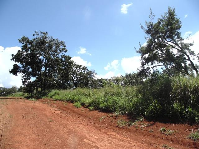 Terreno 02 Hectares Cond. Mansões Park Brasília - Área Rural Nova Betania Df - 135 - Foto 20