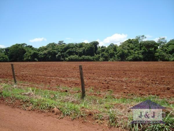 Fazenda município de Edealina - GO! Agende sua visita !!!! - Foto 2