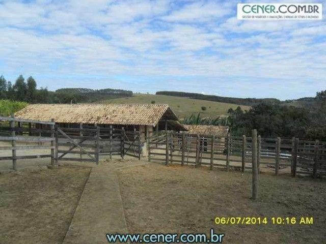 1560/Maravilhosa fazenda de 220 ha com linda sede - ac imóveis em BH - Foto 18