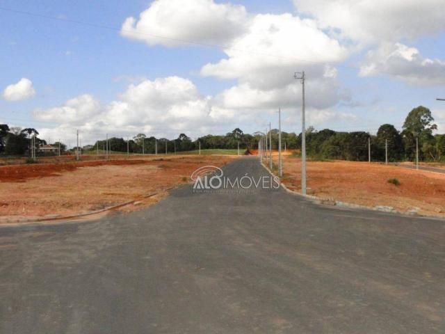 Terreno à venda, 144 m² por r$ 84.270,00 - eucaliptos - fazenda rio grande/pr - Foto 7