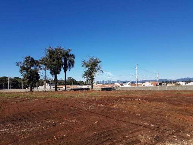 Terreno em condomínio fechado, 125m² exclusivos, área verde, a partir de r$105 mil reais - Foto 11