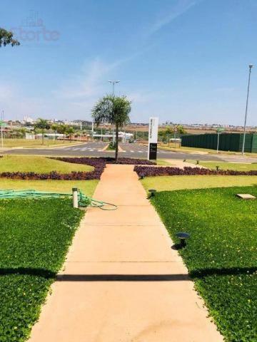 Terreno à venda, 466 m² por r$ 337.000 - granja marileusa - alphaville 1 - uberlândia/mg - Foto 14