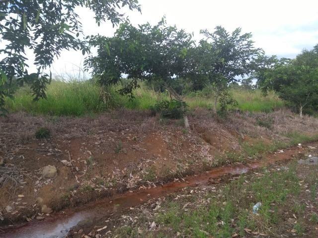 Terreno na Rodovia Ilhéus/Itabuna km 07 - Banco da Vitória - Foto 11