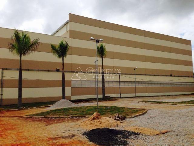 Galpão/depósito/armazém para alugar em Parque brasil 500, Paulínia cod:GA002130 - Foto 6
