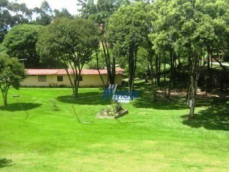 Chácara com 4 dormitórios à venda, 188368 m² por r$ 1.200.000,00 - colônia matos - mandiri - Foto 11