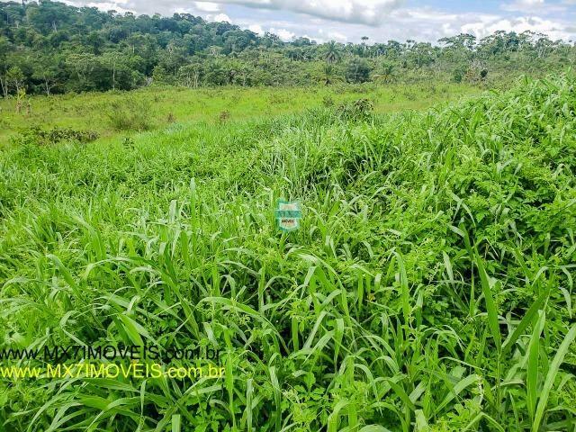 Ubaitaba. Fazenda mista de 160 Hectares, rica em água. - Foto 17