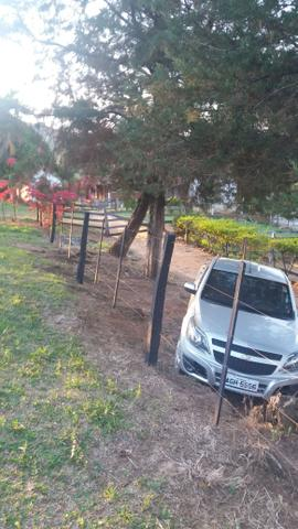 Arrenda -Fazenda Agricultura e Pecuária- - Foto 8