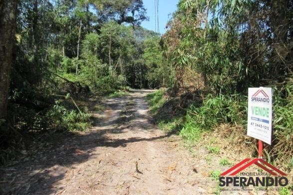 Terreno no palmeiras: r$ 48.000,00 à vista ou entrada e saldo em até 120x - Foto 3