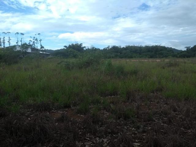 Terreno na Rodovia Ilhéus/Itabuna km 07 - Banco da Vitória - Foto 9