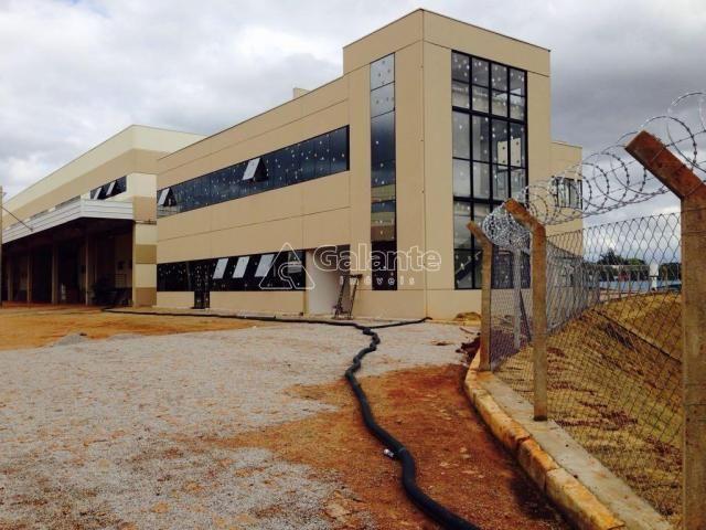 Galpão/depósito/armazém para alugar em Parque brasil 500, Paulínia cod:GA002130 - Foto 4