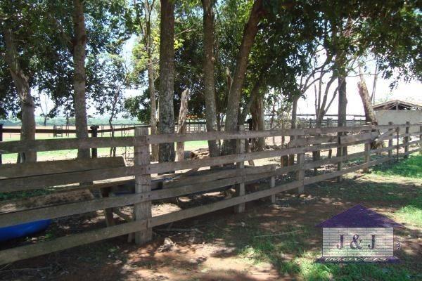 Fazenda município de Edealina - GO! Agende sua visita !!!! - Foto 12