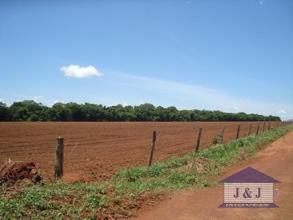 Fazenda município de Edealina - GO! Agende sua visita !!!! - Foto 3