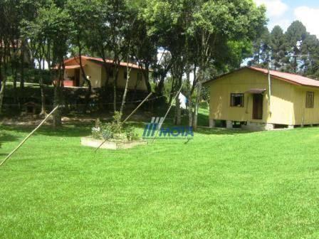 Chácara com 4 dormitórios à venda, 188368 m² por r$ 1.200.000,00 - colônia matos - mandiri - Foto 4