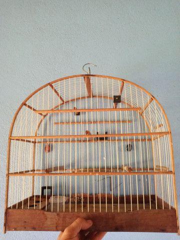 Vendo gaiola  - Foto 3