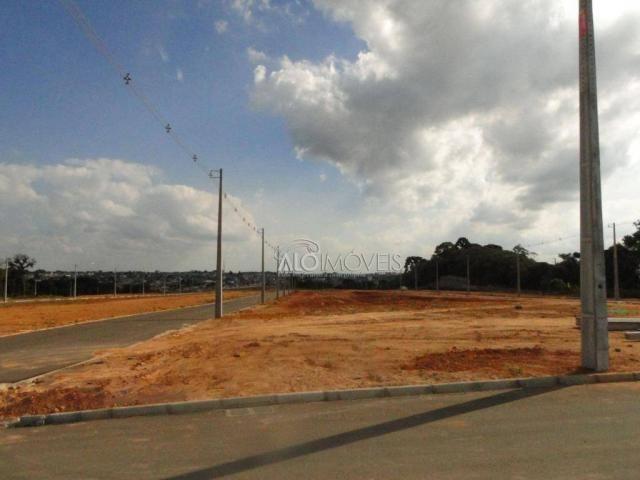 Terreno à venda, 144 m² por r$ 84.270,00 - eucaliptos - fazenda rio grande/pr - Foto 3