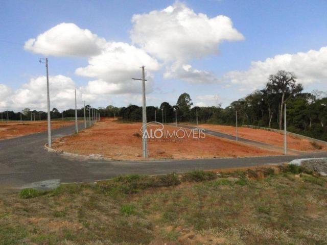Terreno à venda, 144 m² por r$ 84.270,00 - eucaliptos - fazenda rio grande/pr - Foto 8