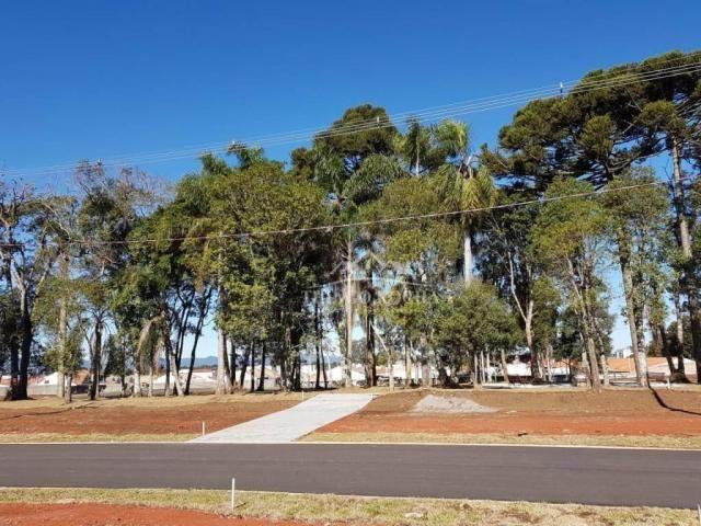 Terreno em condomínio fechado, 125m² exclusivos, área verde, a partir de r$105 mil reais - Foto 12