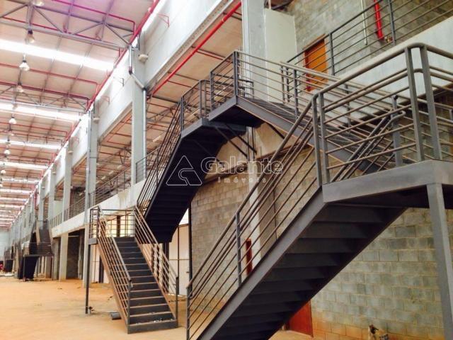 Galpão/depósito/armazém para alugar em Parque brasil 500, Paulínia cod:GA002130 - Foto 3
