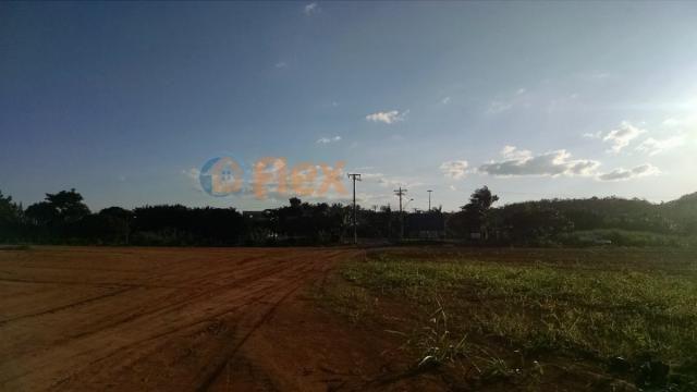 Terreno para alugar em Jucú, Viana cod:FLEX-AREA0030 - Foto 13