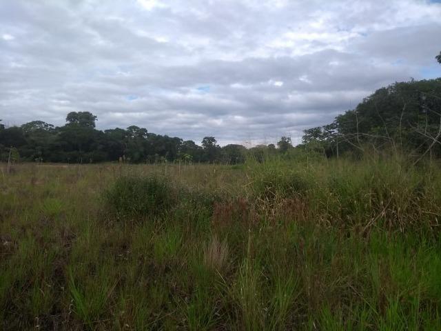 Terreno na Rodovia Ilhéus/Itabuna km 07 - Banco da Vitória - Foto 10