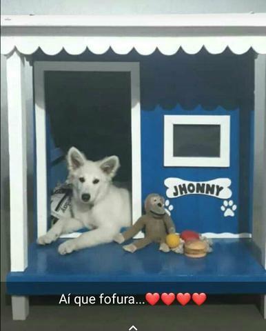 Casinha de cachorro com varanda N 05 a partir de 309,00