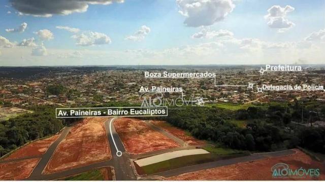 Terreno à venda, 144 m² por r$ 84.270,00 - eucaliptos - fazenda rio grande/pr - Foto 11