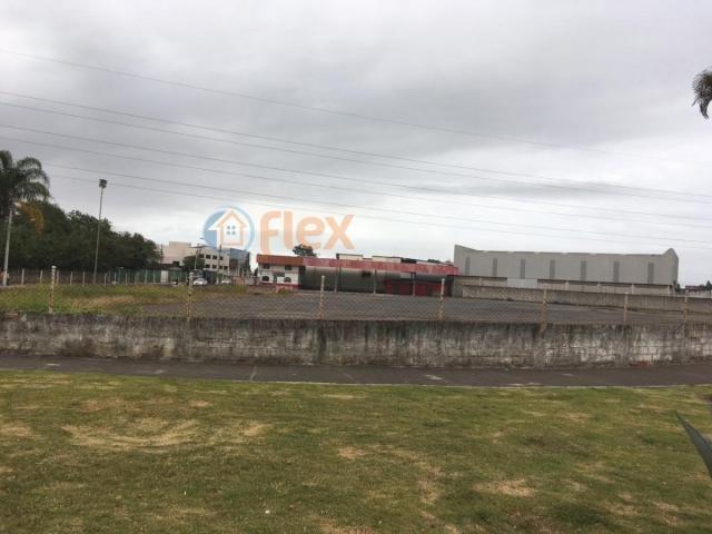 Terreno para alugar em São geraldo, Serra cod:FLEX-AREA0032 - Foto 5