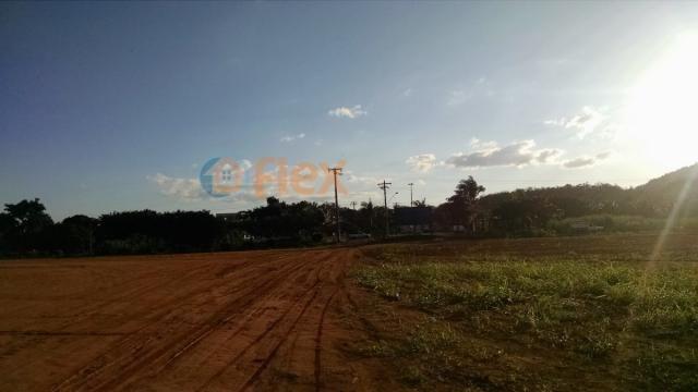 Terreno para alugar em Jucú, Viana cod:FLEX-AREA0030 - Foto 15
