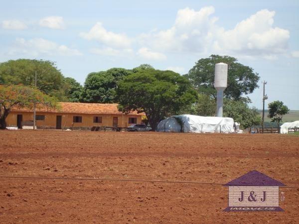 Fazenda município de Edealina - GO! Agende sua visita !!!! - Foto 7