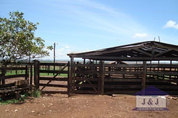 Fazenda município de Edealina - GO! Agende sua visita !!!! - Foto 6