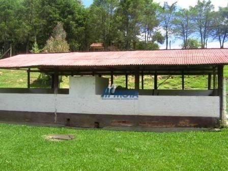 Chácara com 4 dormitórios à venda, 188368 m² por r$ 1.200.000,00 - colônia matos - mandiri - Foto 12