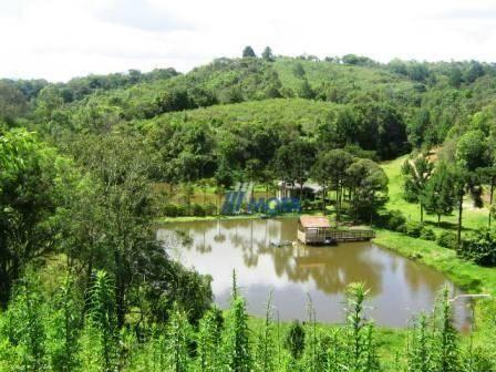 Chácara com 4 dormitórios à venda, 188368 m² por r$ 1.200.000,00 - colônia matos - mandiri - Foto 2