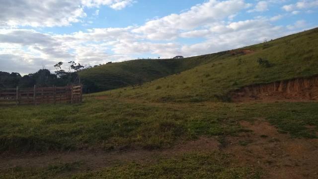 Oportunidade! terreno 60.000m2 a venda em pinhalzinho sp - Foto 5