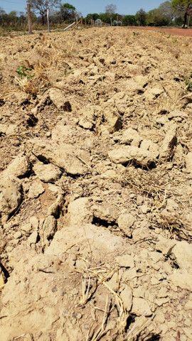Fazenda alto da boa vista mt - Foto 2
