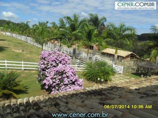 1560/Maravilhosa fazenda de 220 ha com linda sede - ac imóveis em BH - Foto 7