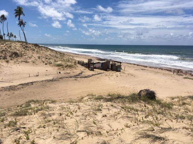 Lotes na Praia - Foto 3