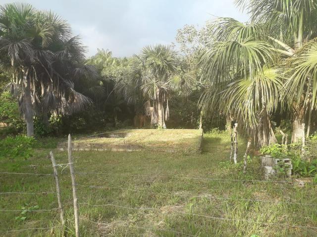 Vende-se um sítio no itaparí -panaquatira - Foto 2