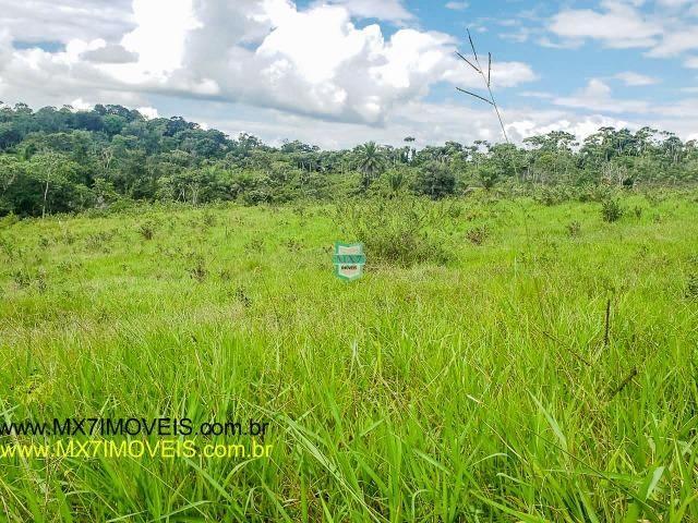 Ubaitaba. Fazenda mista de 160 Hectares, rica em água. - Foto 19