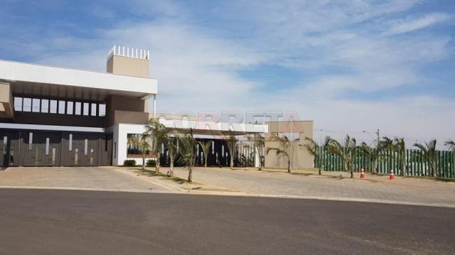 Terreno à venda em Alvorada, Aracatuba cod:V04361 - Foto 2