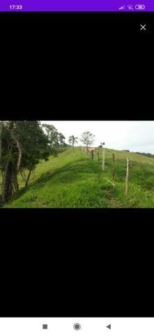 BARBADA terreno com escritura pública em Imarui - Foto 2