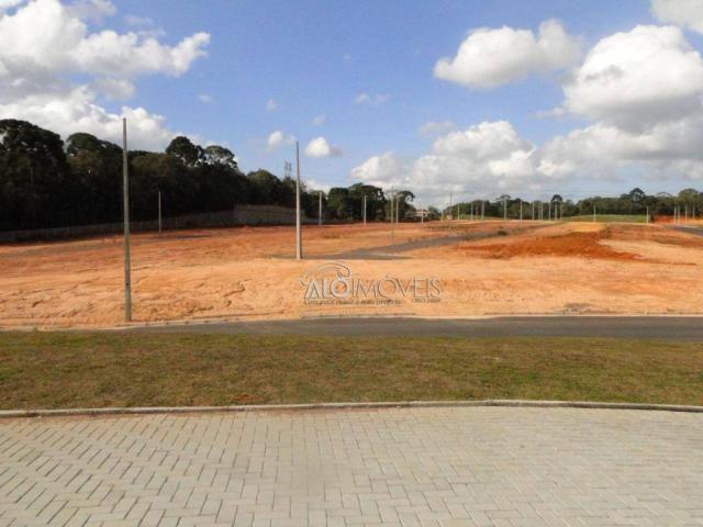 Terreno à venda, 144 m² por r$ 84.270,00 - eucaliptos - fazenda rio grande/pr - Foto 5