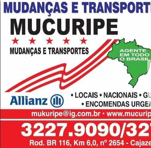 Mudança local e todo Brasil valor 150.00 reais