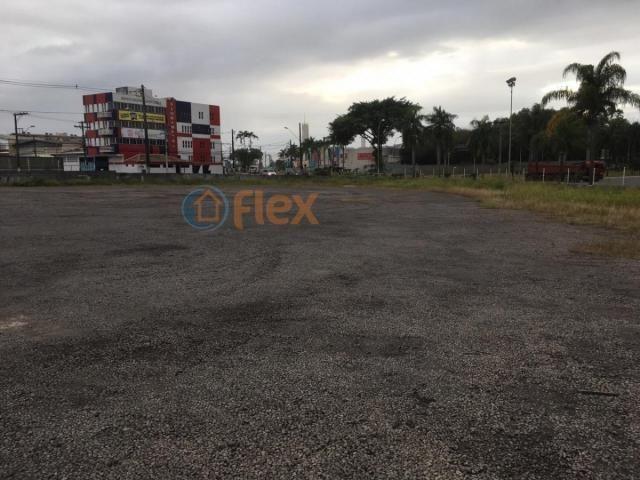 Terreno para alugar em São geraldo, Serra cod:FLEX-AREA0032 - Foto 7