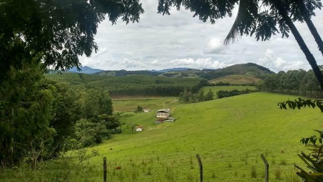 Fazenda de 280 alqueires no Sul de Minas Gerais - Foto 5