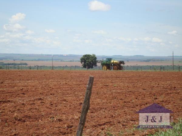 Fazenda município de Edealina - GO! Agende sua visita !!!! - Foto 11