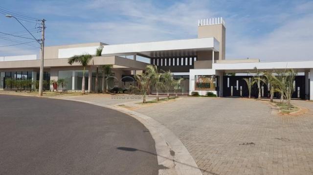 Terreno à venda em Alvorada, Aracatuba cod:V04361 - Foto 4