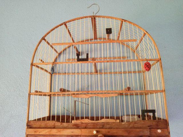 Vendo gaiola  - Foto 4