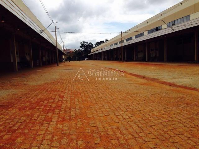 Galpão/depósito/armazém para alugar em Parque brasil 500, Paulínia cod:GA002130 - Foto 9
