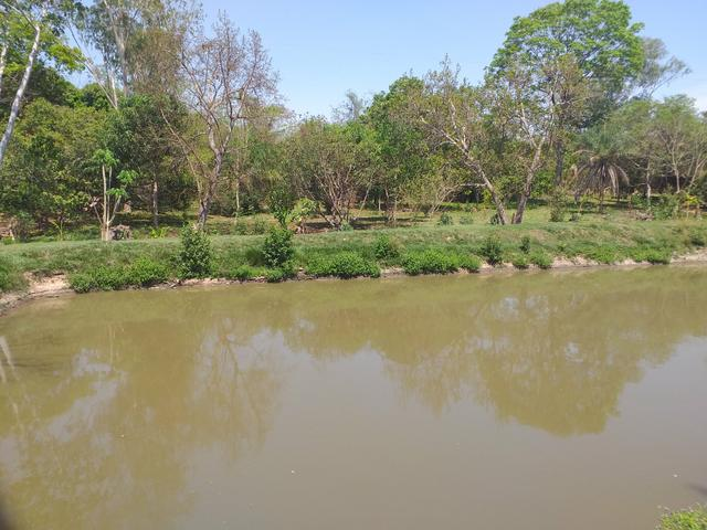 Chácara na beira do rio coxipo - Foto 8